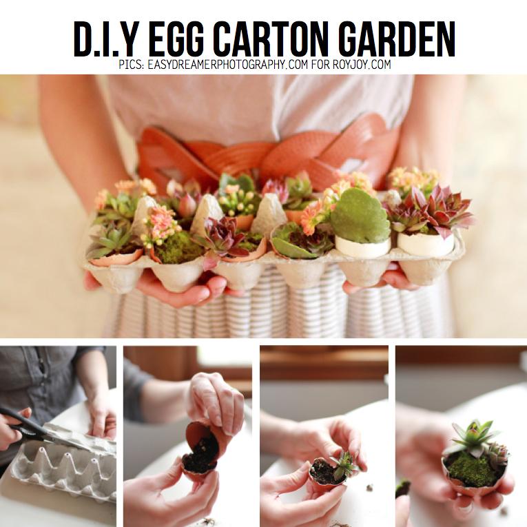 Egg-Carton Garden